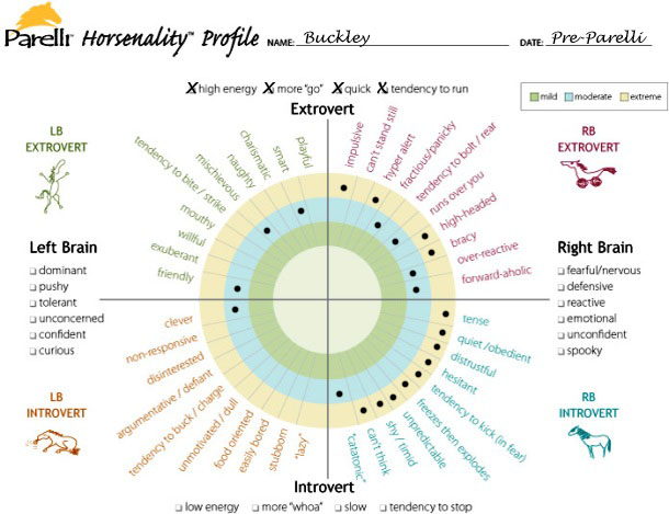 Buckley_-_pre-Parelli_Horsenality_chart