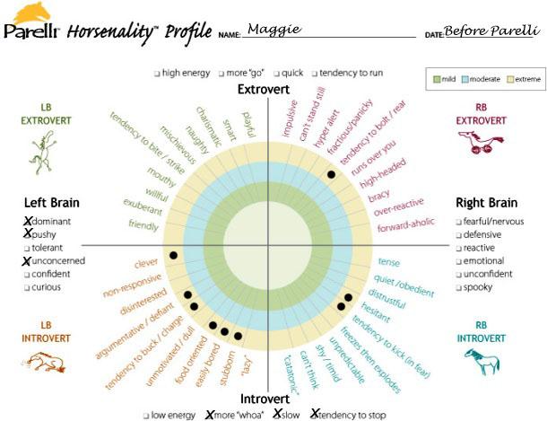 Maggie_-_pre-Parelli_Horsenality_chart