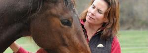 kelly looking at horse