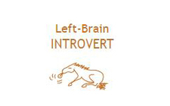 left brain intro