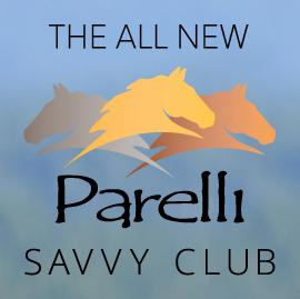 savvy club logo